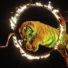 Цирки в Оричах